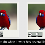 What to do when one work has several licenses | Safe Creative